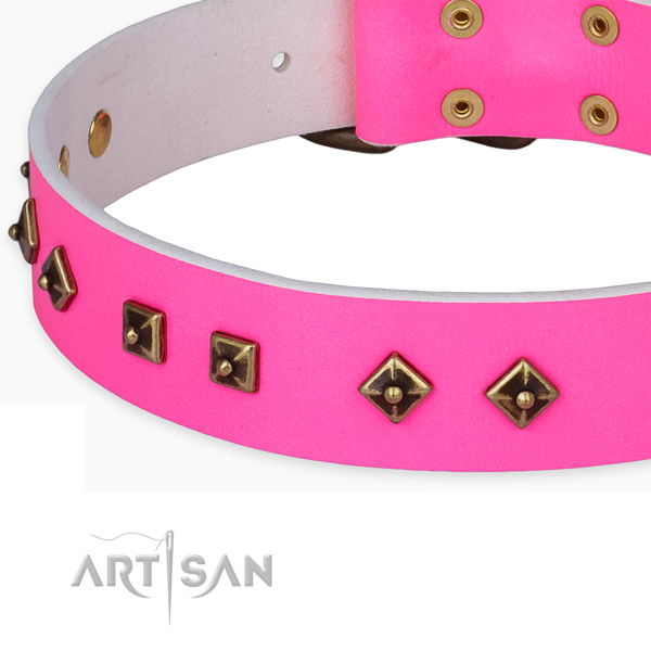 Incredible full grain natural leather collar for your beautiful doggie