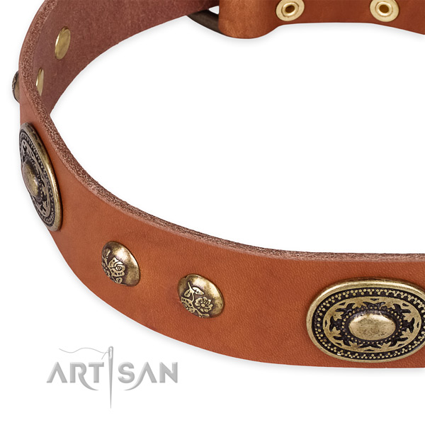 Awesome genuine leather collar for your attractive canine