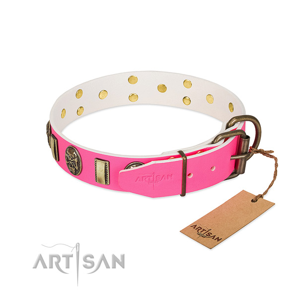 Corrosion proof embellishments on natural genuine leather dog collar for your pet