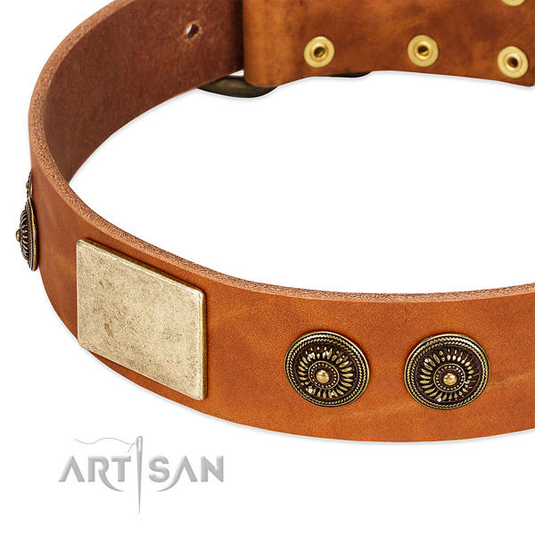 Handcrafted dog collar created for your stylish canine