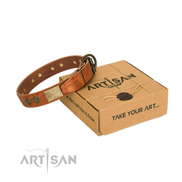 Corrosion proof buckle on full grain natural leather dog collar for everyday walking