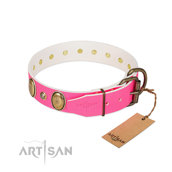 Everyday walking top rate natural genuine leather dog collar