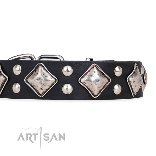 Natural leather dog collar with fashionable rust-proof studs