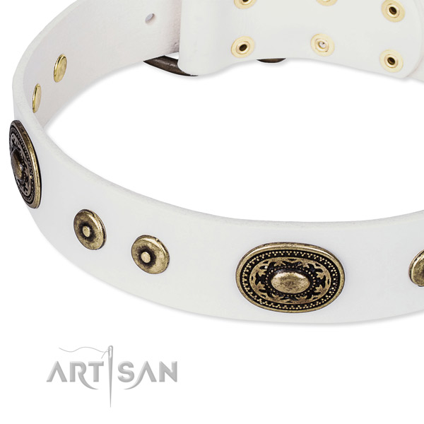 Leather dog collar made of reliable material with studs