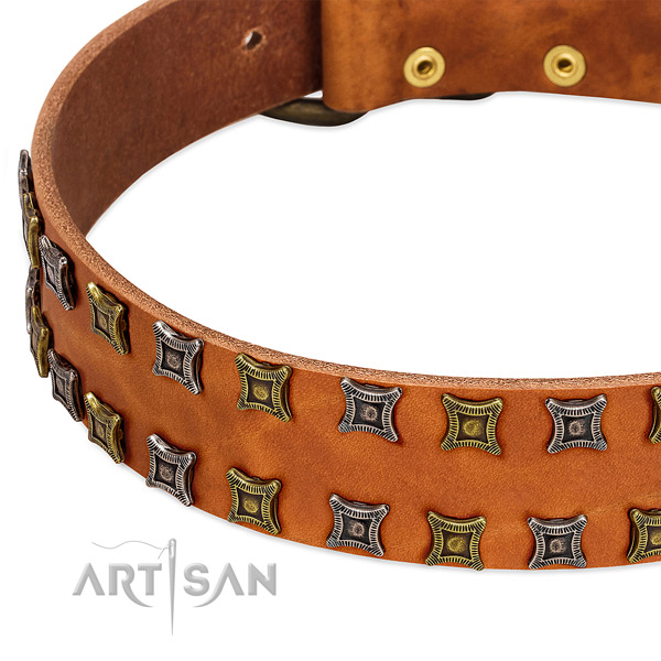High quality natural leather dog collar for your stylish pet