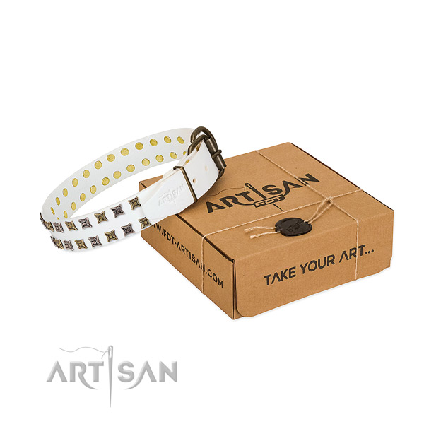 Full grain leather collar with trendy adornments for your canine