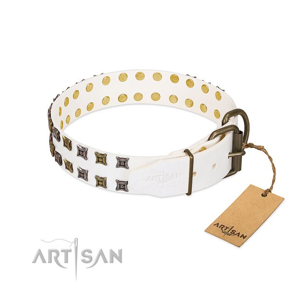 Full grain leather collar with unusual embellishments for your dog
