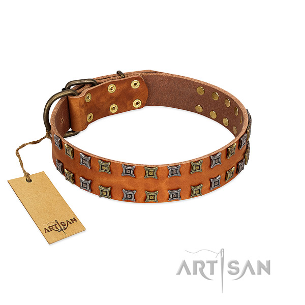 Best quality full grain leather dog collar with studs for your doggie