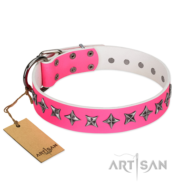 Top quality genuine leather dog collar with unique embellishments