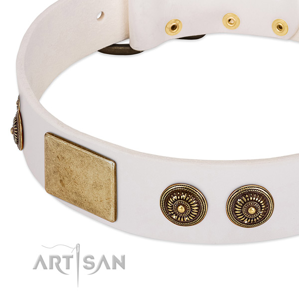 Handmade dog collar created for your handsome canine