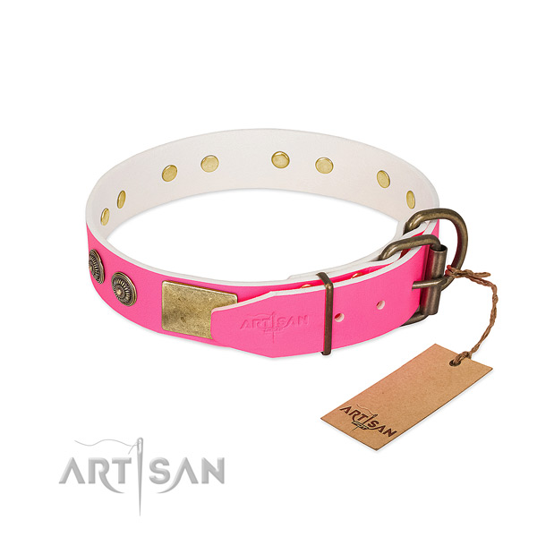 Rust-proof hardware on genuine leather collar for walking your pet