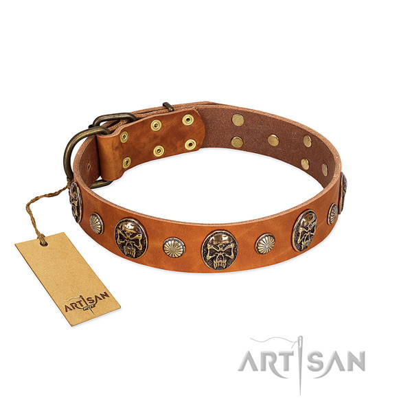 Amazing natural genuine leather dog collar for basic training