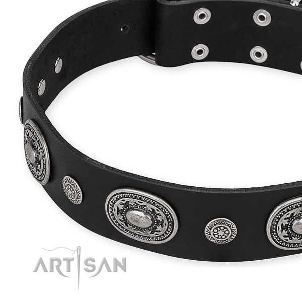 Top notch genuine leather dog collar made for your impressive four-legged friend