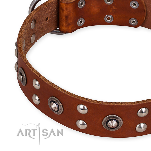 Full grain leather collar with durable fittings for your beautiful canine