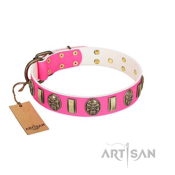 Corrosion resistant studs on full grain genuine leather dog collar for your canine