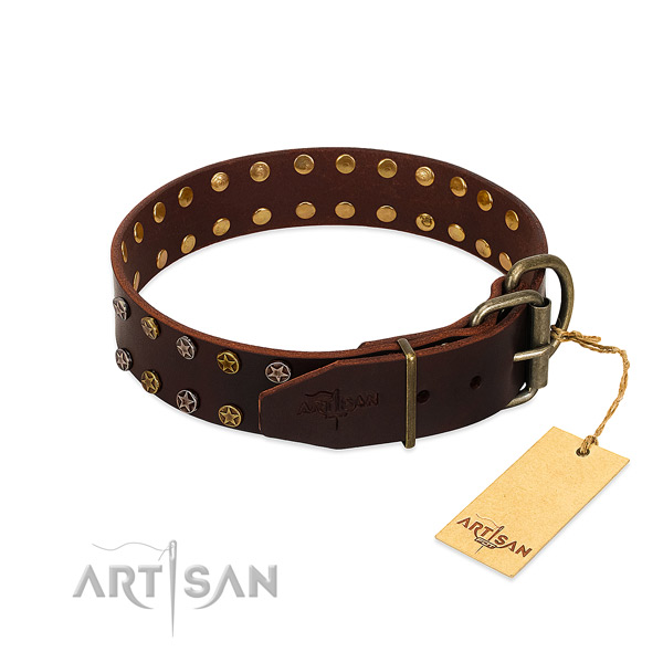 Everyday use full grain natural leather dog collar with inimitable studs
