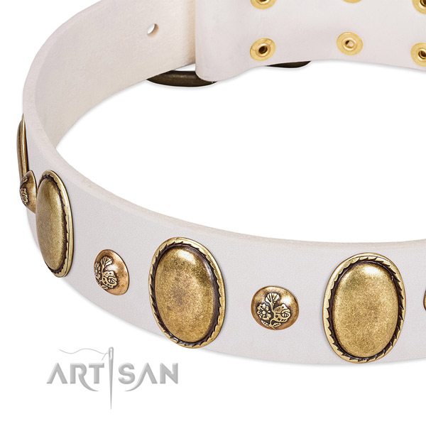 Full grain genuine leather dog collar with designer studs