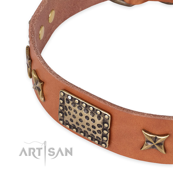 Leather collar with strong buckle for your attractive dog