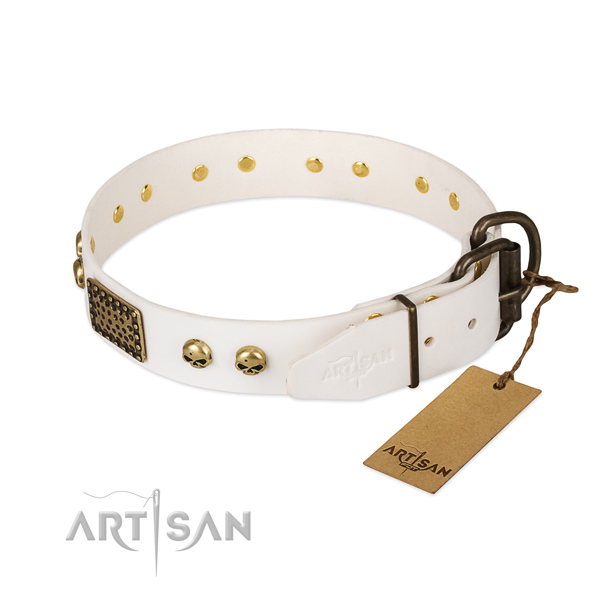 Adjustable leather dog collar for basic training your four-legged friend