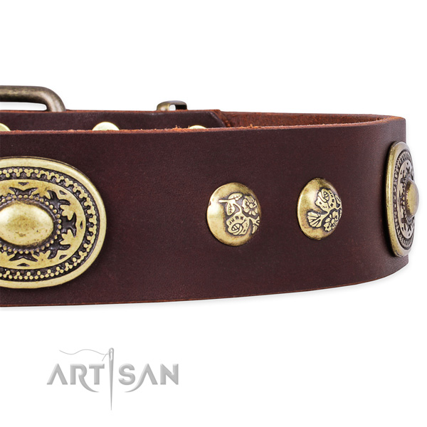 Unusual full grain leather collar for your beautiful doggie