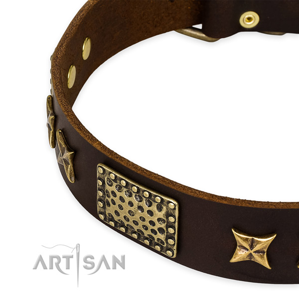 Full grain genuine leather collar with durable D-ring for your impressive pet