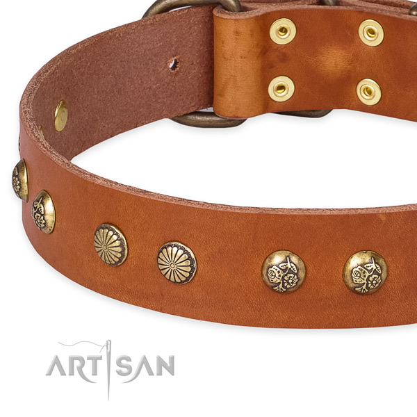Genuine leather collar with rust-proof buckle for your stylish pet