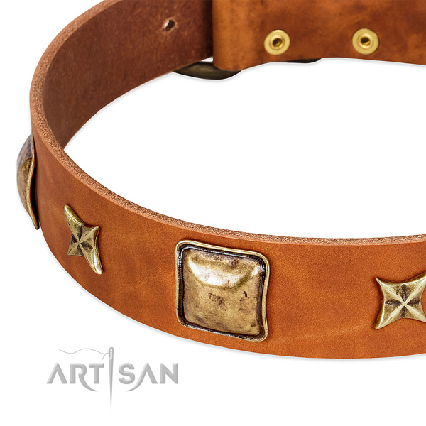 Durable buckle on full grain leather dog collar for your doggie
