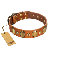"""Crystal Sand"" FDT Artisan Tan Leather American Bulldog Collar with Vintage Looking Oval and Round Studs"