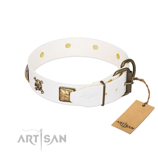 Incredible leather dog collar with rust-proof adornments