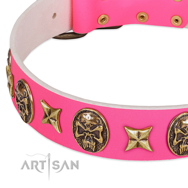 Natural leather dog collar with exceptional studs