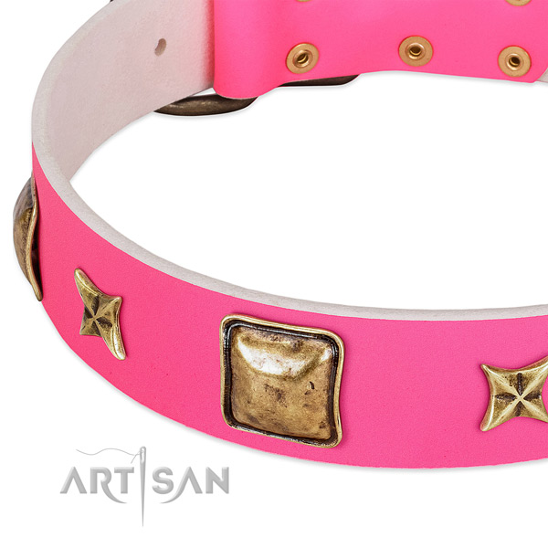 Leather dog collar with exceptional embellishments