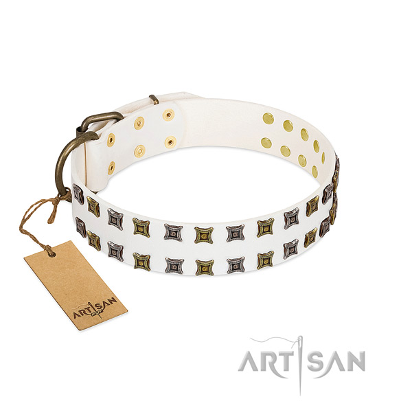 Reliable leather dog collar with adornments for your canine