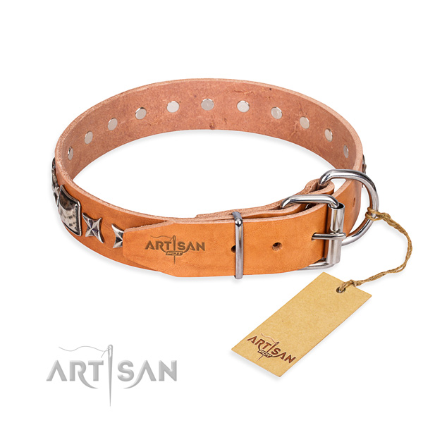 Quality studded dog collar of full grain natural leather