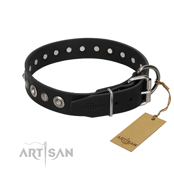 Durable full grain leather dog collar with stylish studs