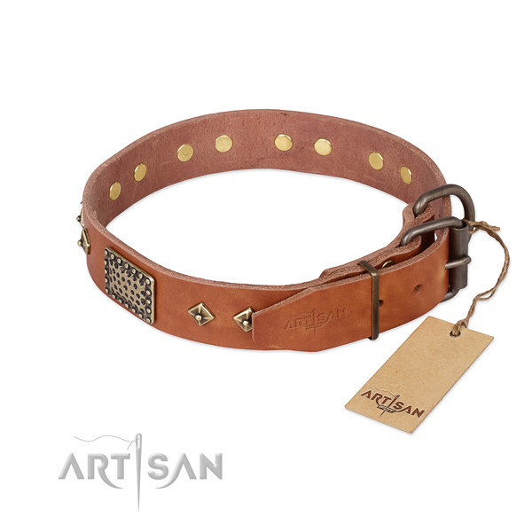 Leather dog collar with durable fittings and studs