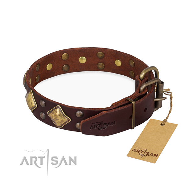 Leather dog collar with top notch rust resistant studs