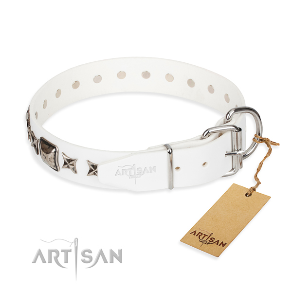 Best quality adorned dog collar of leather