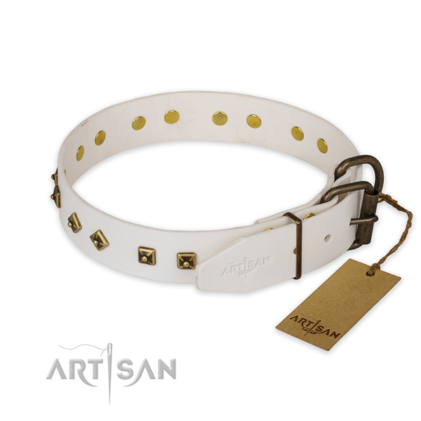 Strong fittings on leather collar for fancy walking your dog