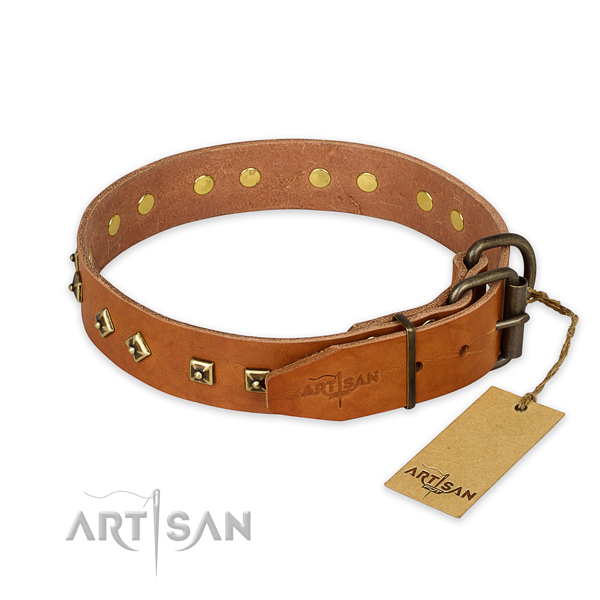 Strong fittings on natural leather collar for walking your doggie
