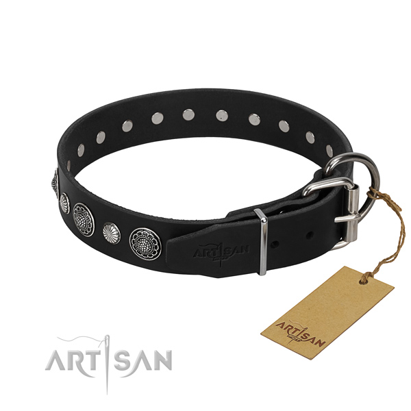Strong full grain natural leather dog collar with incredible studs