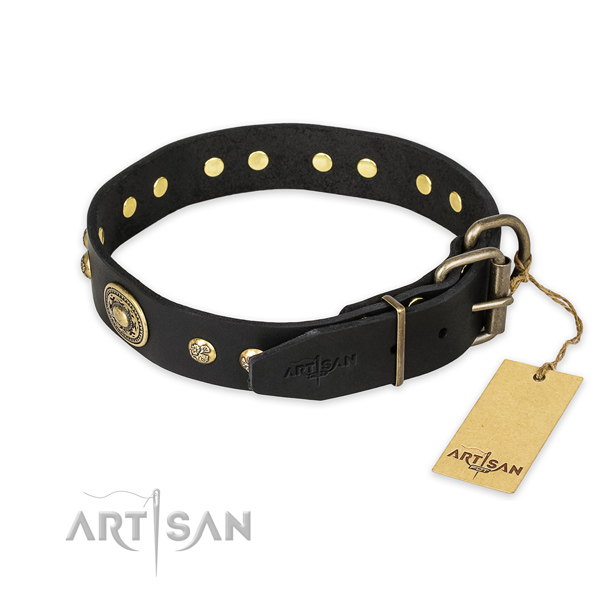 Corrosion proof buckle on genuine leather collar for stylish walking your canine