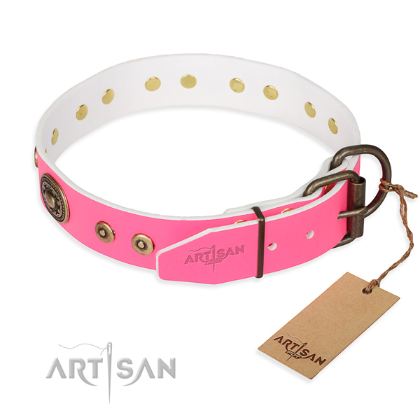 Full grain natural leather dog collar made of quality material with rust resistant adornments