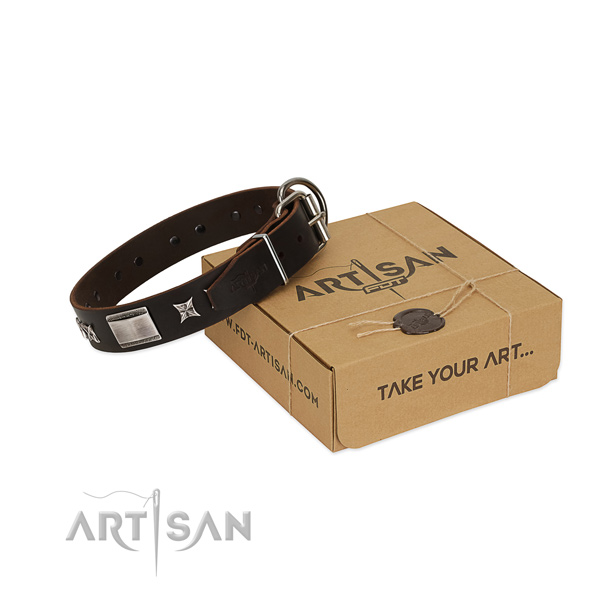 Amazing collar of full grain leather for your handsome canine
