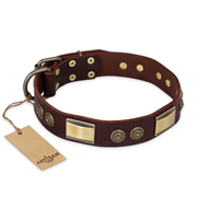 """Golden Stones"" FDT Artisan Brown Leather American Bulldog Collar with Old Bronze Look Plates and Circles"