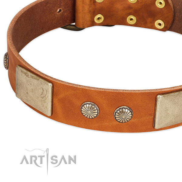 Reliable buckle on natural genuine leather dog collar for your pet