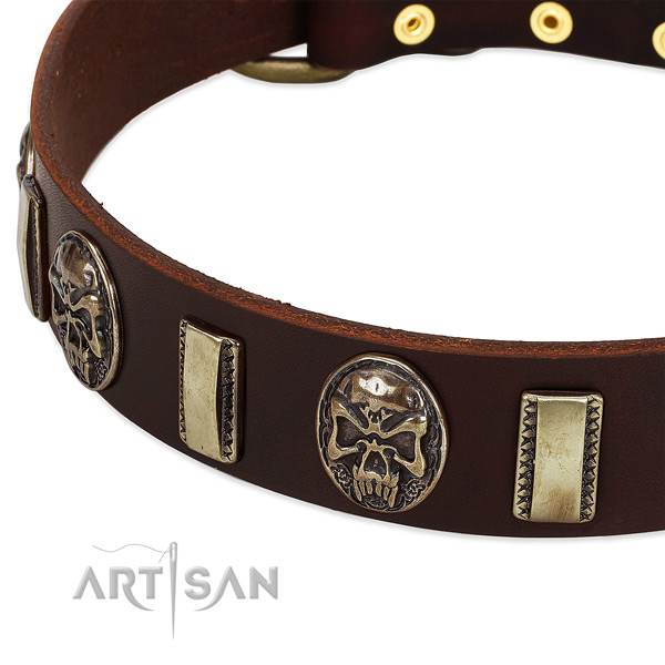 Corrosion resistant adornments on natural genuine leather dog collar for your dog