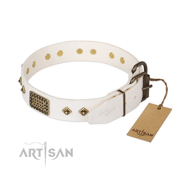 Genuine leather dog collar with rust resistant buckle and embellishments