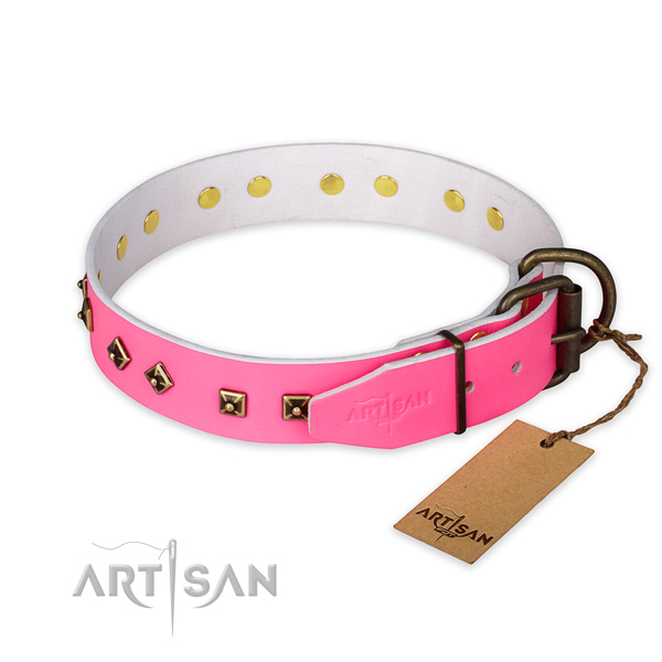 Rust resistant buckle on genuine leather collar for everyday walking your doggie