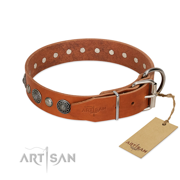 Reliable leather dog collar with rust-proof fittings