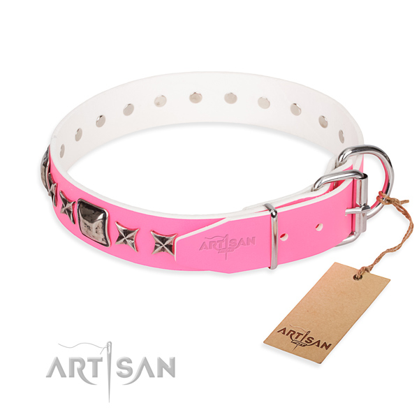 Top notch decorated dog collar of genuine leather